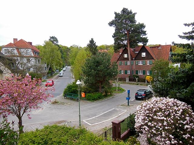 Rondell-Fruehling