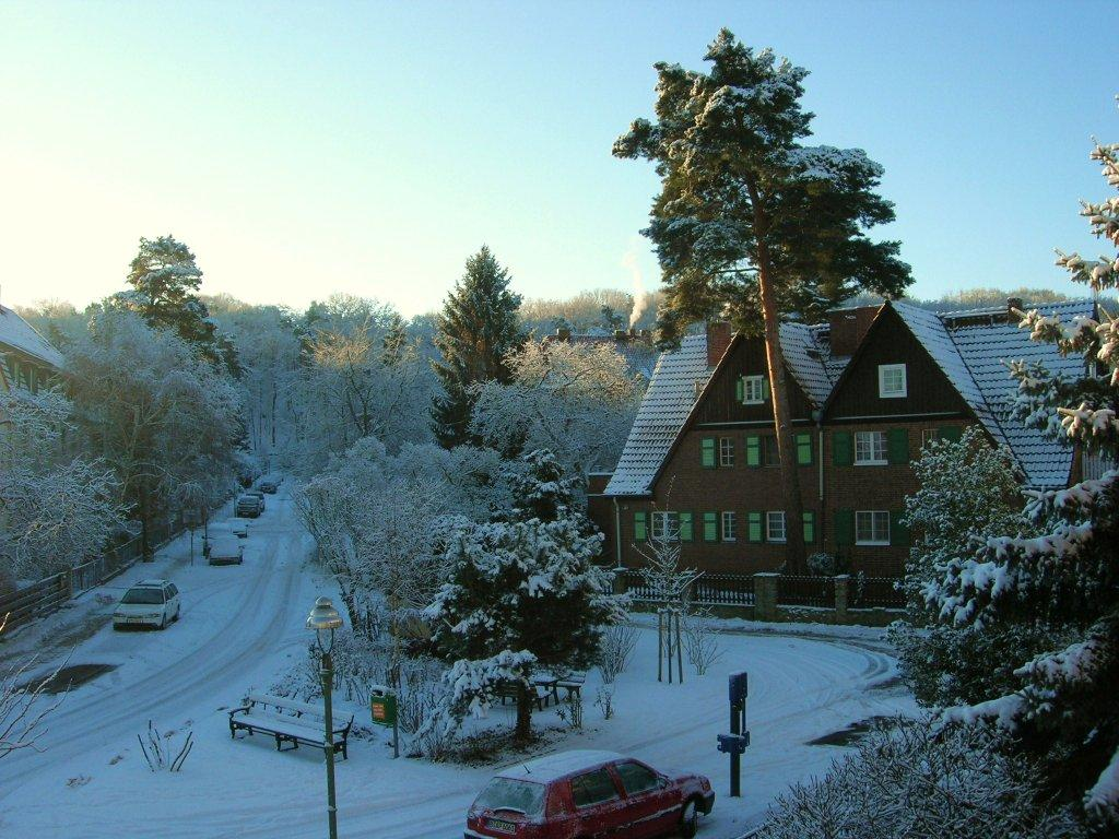 Rondell-Winter-Sonne